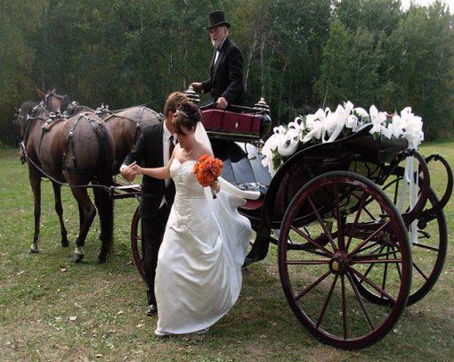 گرانترین عروسی های دنیا
