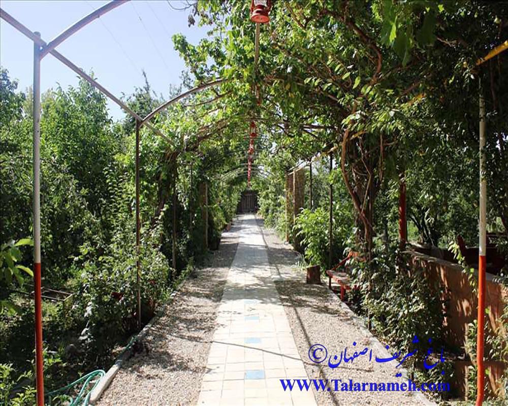 باغ شریف اصفهان