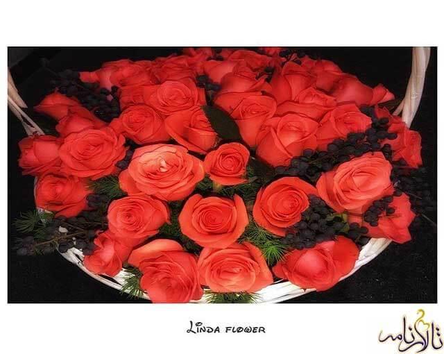گل فروشی لیندا تهران