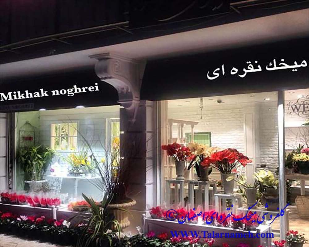 گلفروشی میخک نقره ای اصفهان